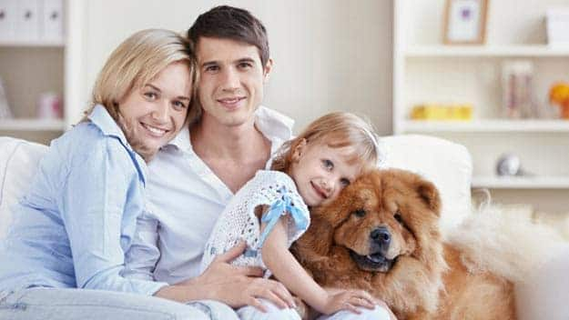 Wills & Trusts dog-young-family Direct Wills Pimlico